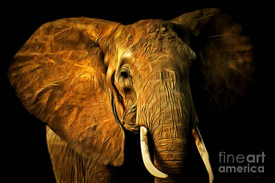 Photograph - Pachyderm 20150210brun by Wingsdomain Art and Photography