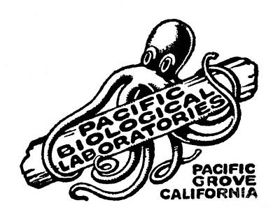 Pacific Biological Laboratories Of Pacific Grove Circa 1930 Art Print