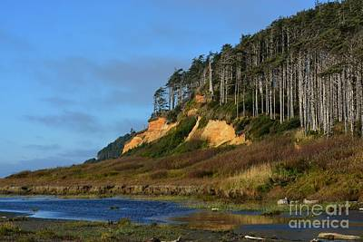 Photograph - Pacific Coast by Gayle Swigart