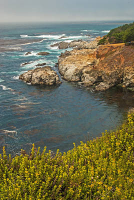 Photograph - Pacific Coast Highway Views by Willie Harper