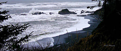 Photograph - Pacific Coast Landscape by Jeanette C Landstrom