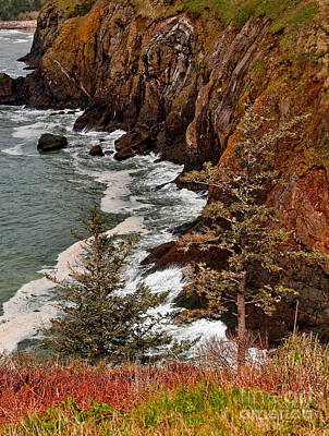 Photograph - Pacific Ocean Cliff Line On Washington State Coast by Valerie Garner