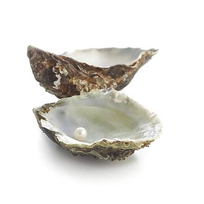 Lindisfarne Photograph - Pacific Oyster Shell And Pearl by Science Photo Library