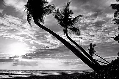 Kaanapali Beach Photograph - Pacific Paradise by DJ Florek