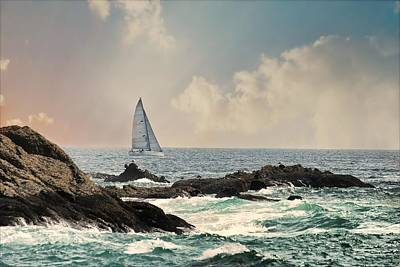 Photograph - Pacific Sail by Diana Angstadt