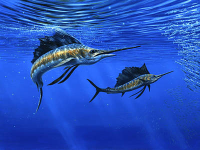 Wall Art - Painting - Pacific Sailfish by Guy Crittenden