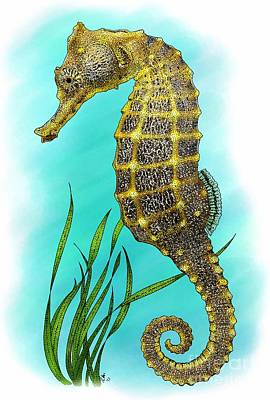 Pacific Seahorse Art Print by Roger Hall