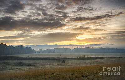 Photograph - Pack River Mists by Idaho Scenic Images Linda Lantzy