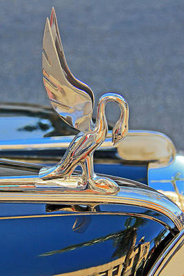 Photograph - Packard Hood Ornament by Ben and Raisa Gertsberg