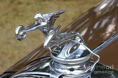 Photograph - Packard Victoria Radiator Cap by Neil Zimmerman