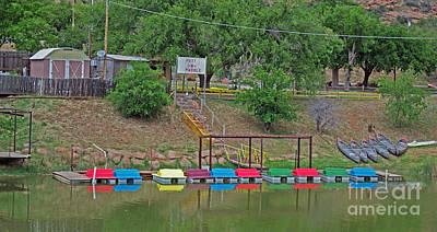 Photograph - Paddle Boats by Derry Murphy