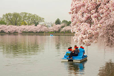 Photograph - Paddleboating In The Tidal Basin by Leah Palmer