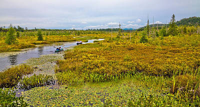 Photograph - Paddling Browns Tract Inlet - Raquette Lake by David Patterson
