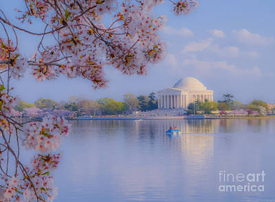 Photograph - Paddling Past The Blossoms On The Basin by Jeff at JSJ Photography