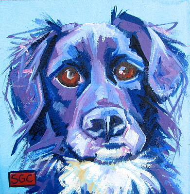 Carter.oil Painting - Paddo by Sarah Gayle Carter
