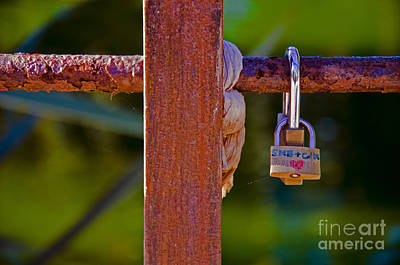Photograph - Padlock Technology Love1 by Victoria Herrera