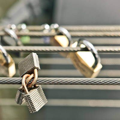 Classic Collection Photograph - Padlocks by Tom Gowanlock