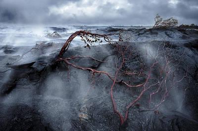 Photograph - Pahoa by Hawaii  Fine Art Photography