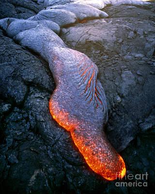 Pahoehoe Lava, Kilauea Volcano, Hawaii Print by Stephen & Donna O'Meara