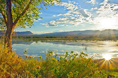 Photograph - Pahranagat National Wildlife Refuge by Gigi Ebert