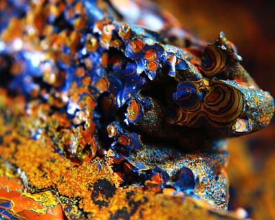 Photograph - Paint Booth Geology 12 by Scott Hovind