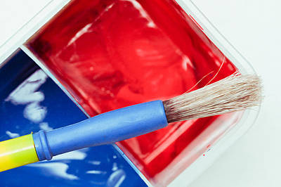 Painter Photograph - Paint Brush by Tom Gowanlock