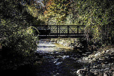 Photograph - Paint Creek Bridge by Ronald Grogan
