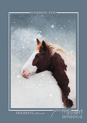 Photograph - Paint Horse In The Snow Christmas Cards by Jai Johnson