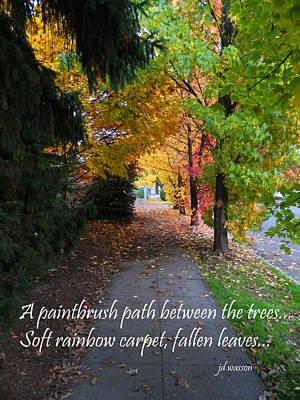 Photograph - Paintbrush Path by Jacqueline  DiAnne Wasson