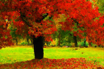 Photograph - Painted Autumn by Karol Livote