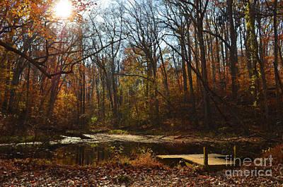 Digital Art - Painted Autumn Sun by Eva Kaufman
