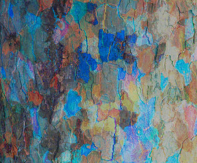 Painted Bark Art Print by Stephanie Grant