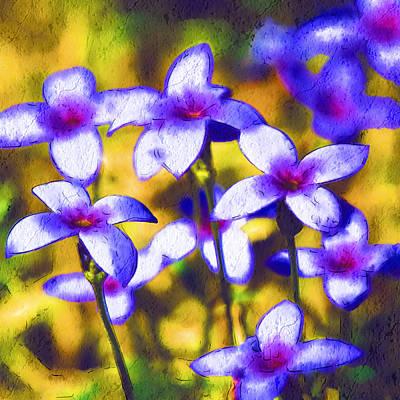 Painted Bluets Art Print