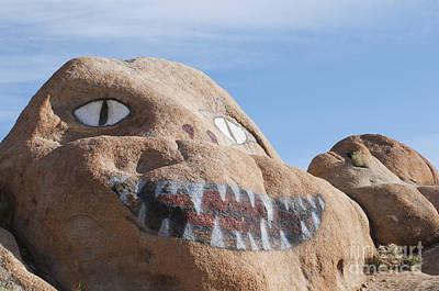 Photograph - Painted Boulders by Dan Suzio