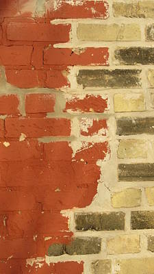 Photograph - Painted Brick 2 by Anita Burgermeister