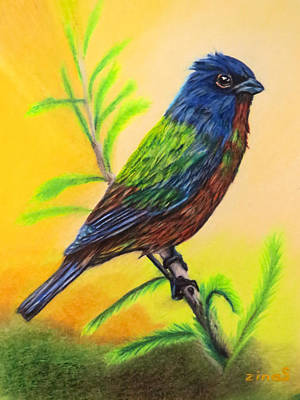 Painted Bunting Bird Original by Zina Stromberg