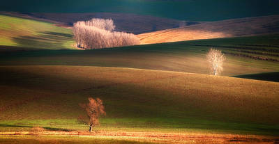 Tuscany Italy Photograph - Painted By The Light by
