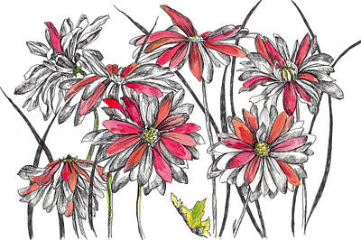 Drawing - Painted Daisies by Cathie Richardson