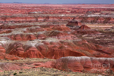 Painted Desert 1 Original