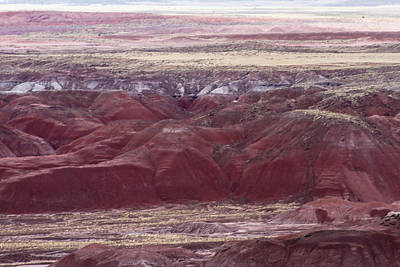 Photograph - Painted Desert  1 by Robert Hebert