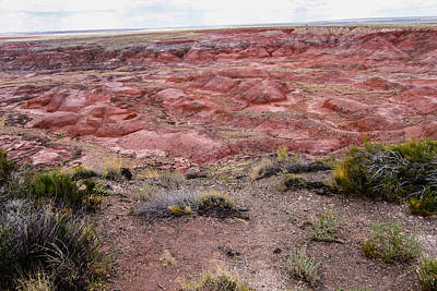 Photograph - Painted Desert 10 by Robert Hebert