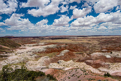 Photograph - Painted Desert 12 by Robert Hebert