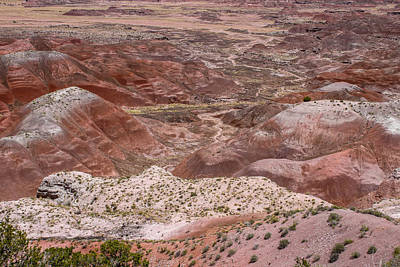 Photograph - Painted Desert  6 by Robert Hebert