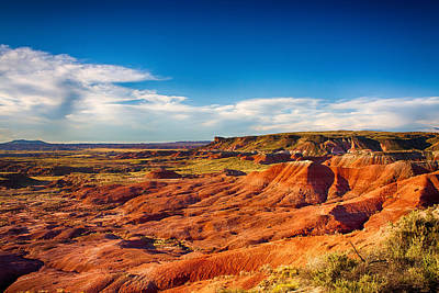 Arizona Photograph - Painted Desert by Fred Larson