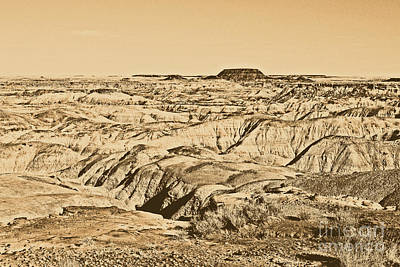 Digital Art - Painted Desert In Petrified Forest National Park Rustic by Shawn O'Brien