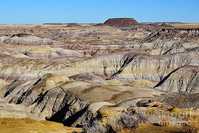 Photograph - Painted Desert In Petrified Forest National Park by Shawn O'Brien