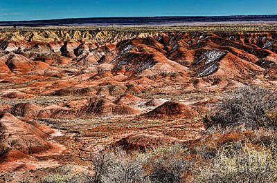 Painted Desert In Winter Art Print