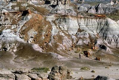 Petrified Forest Arizona Photograph - Painted Desert by Jim West