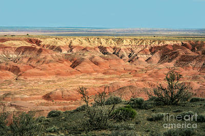 Photograph - Painted Desert by Suzanne Luft
