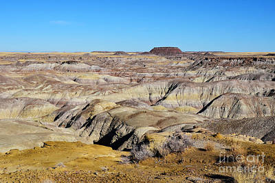Digital Art - Painted Desert View In Petrified Forest National Park by Shawn O'Brien